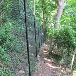 chainlink-fencing-117