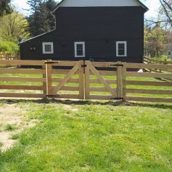 5 rail post wood fence gate