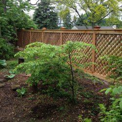 framed red cedar wood fence