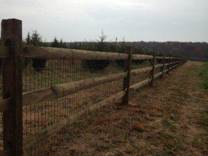 pressure treated wood fence