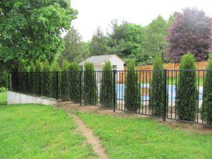 traditional black aluminum fence