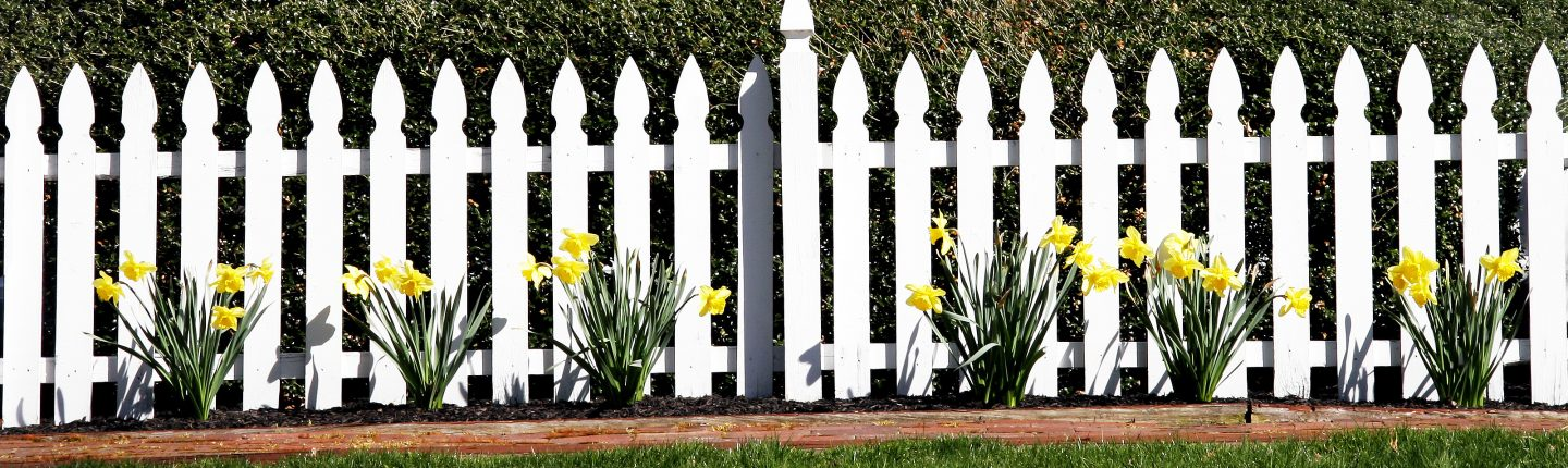 Cleaned White Vinyl Fence with Flowers