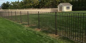 Backyard Aluminum Fence Designed for Big Dogs