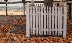 Remove fallen leaves for fence maintenance