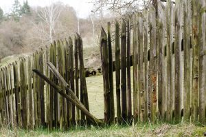 Rickety old wooden fence in need of new pickets