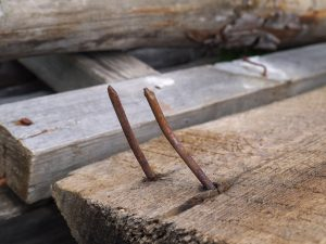 Rusty nails extruding through fence