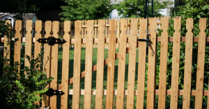 Yard protected by natural picket fence